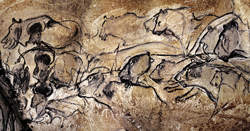 30,000 years old painting of female lions on a wall in the Chauvet Cave in southern France.