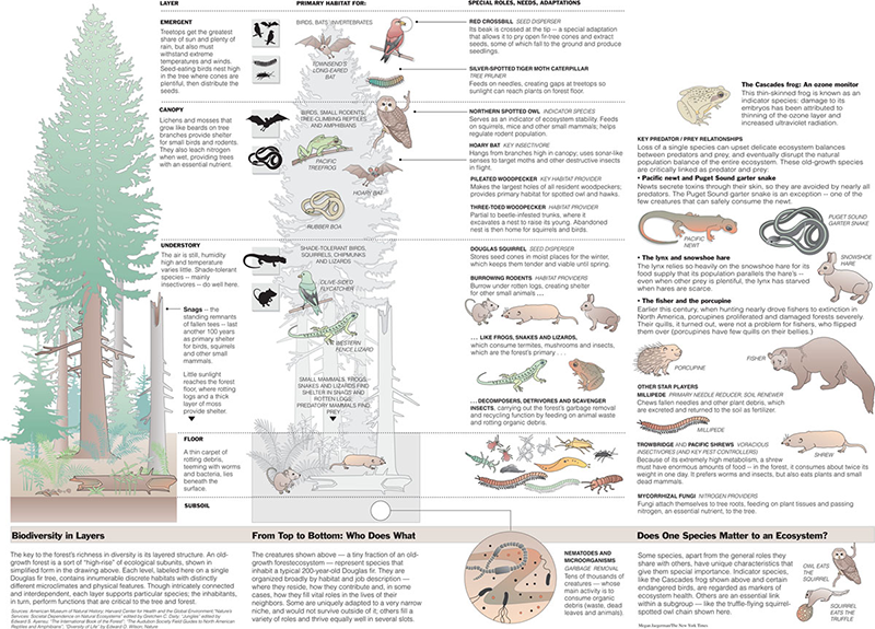 infographics for the The New York Times from 1990 to 1998